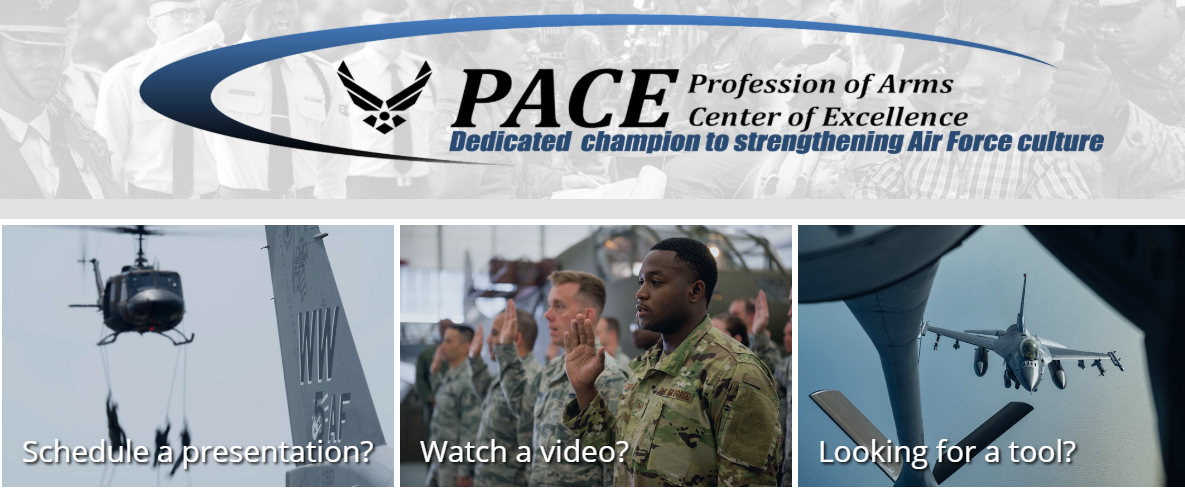 Profession of Arms Center of Excellence Pacesetter graphic